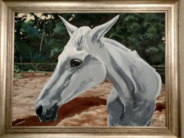JMN2014 Gray Horse