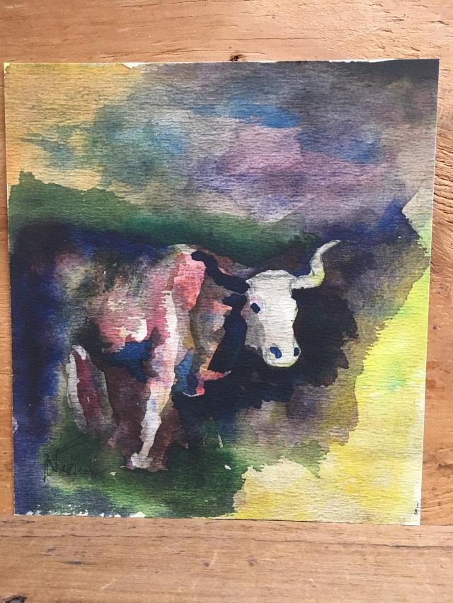 HJN0005W Steer