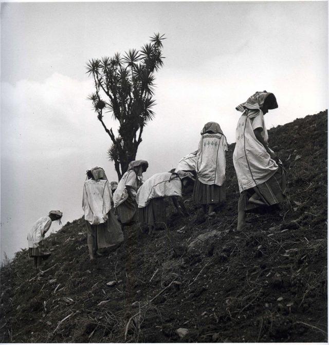 Juan Rulfo, Campesinas de Oaxaca, httpsbombmagazine.orgarticlesfour-photographs-rulfo