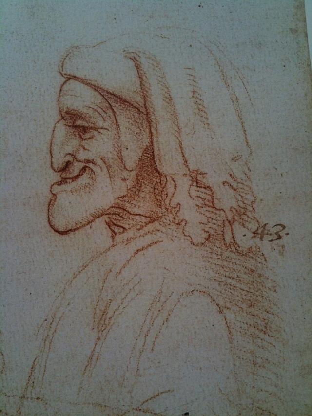 Leonardo Face6